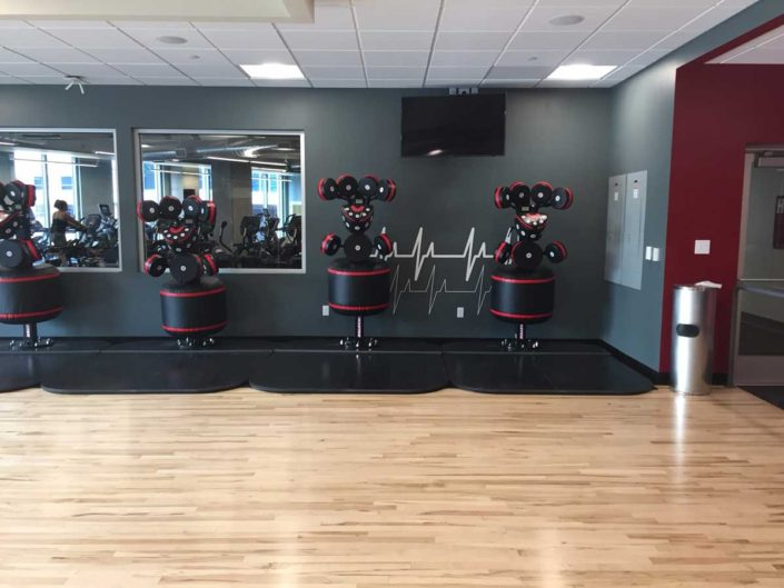 Fitness Equipment Denver